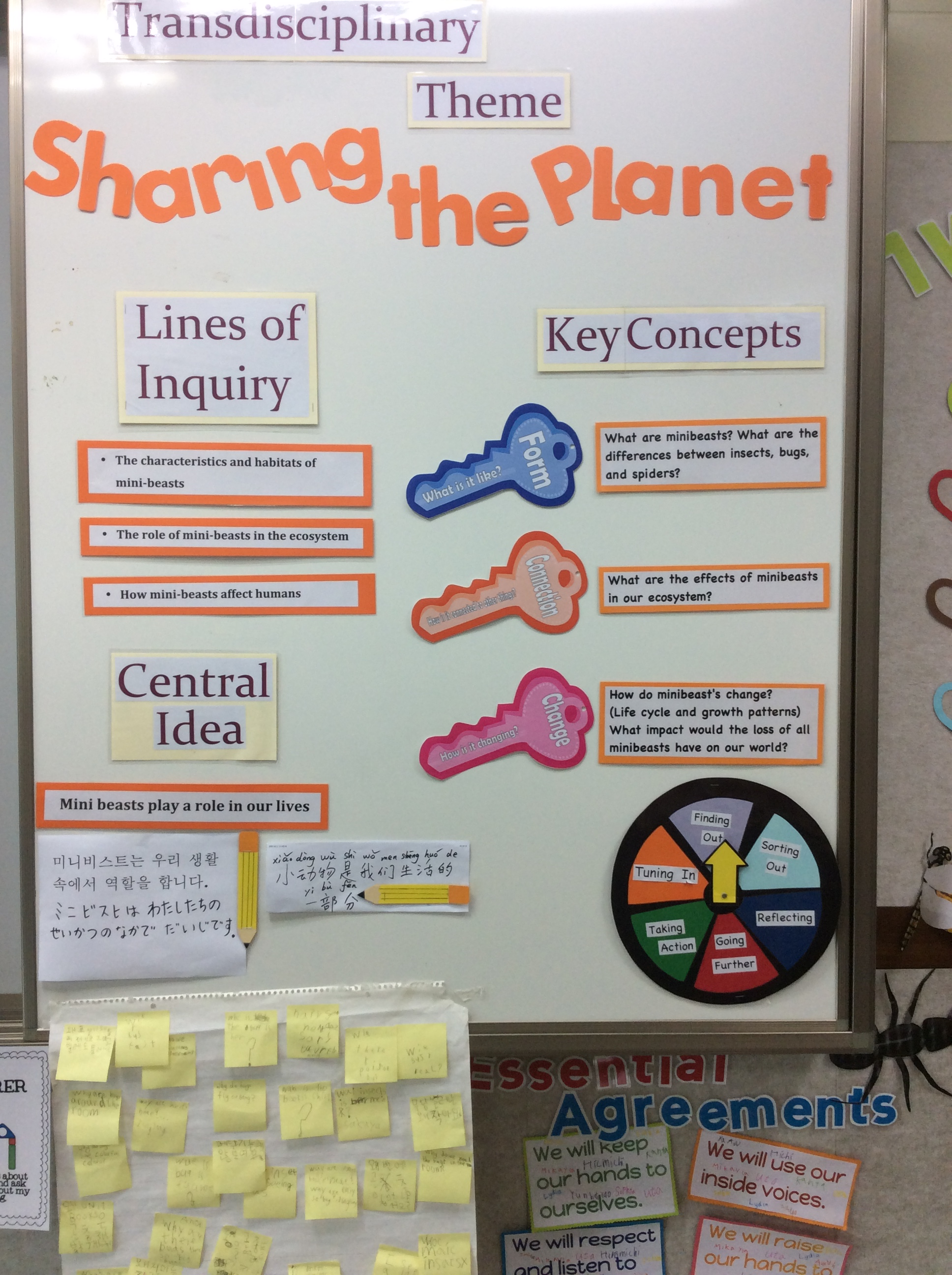 Classroom Unit Ideas ~ The inquiry cycle on display two apples a day